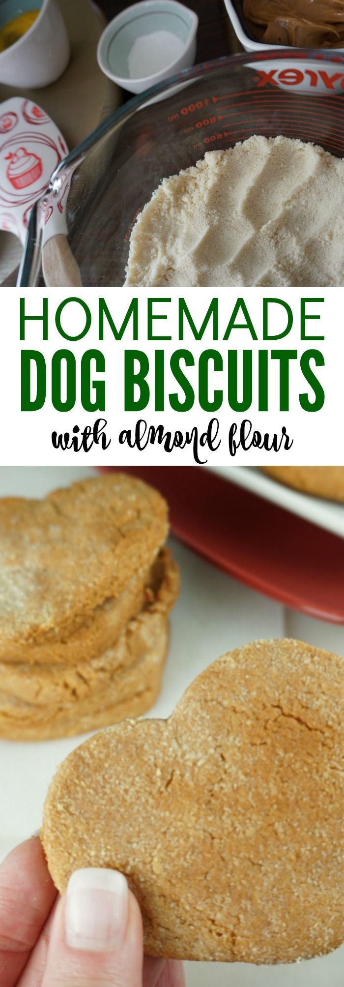 Homemade Dog Treats with Almond Flour! Healthy treats for your pups that they will love! DIY And Easy to make at home with only 5 Simple Ingredients! #diydogtreats #dogtreats #easypetrecipes