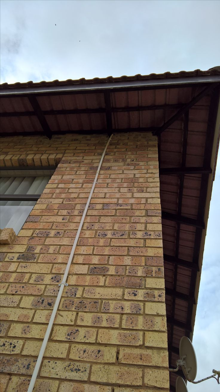 Bee removal in Lenasia Bees removed in roof of flat building
