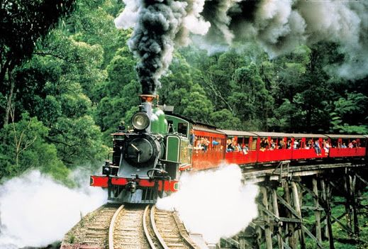 Puffing Billy at Dandenong Ranges....  In outer Melbourne, great fun for the kids and the whole family!