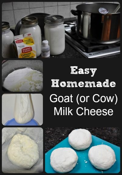 How to make an extremely easy cheese (with step by step photos) that uses goat or cow milk, and is delicious.