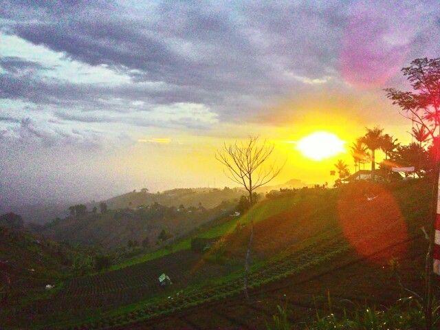 Bukit Moko, Bandung, Indonesia Taken with : Asus ZenFone 5