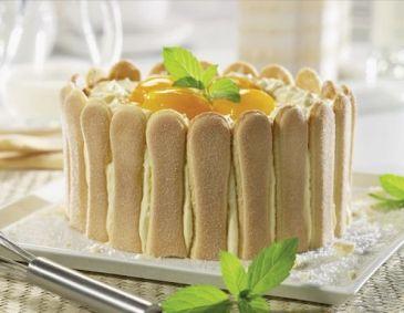 Topfen-Malakoff-Torte