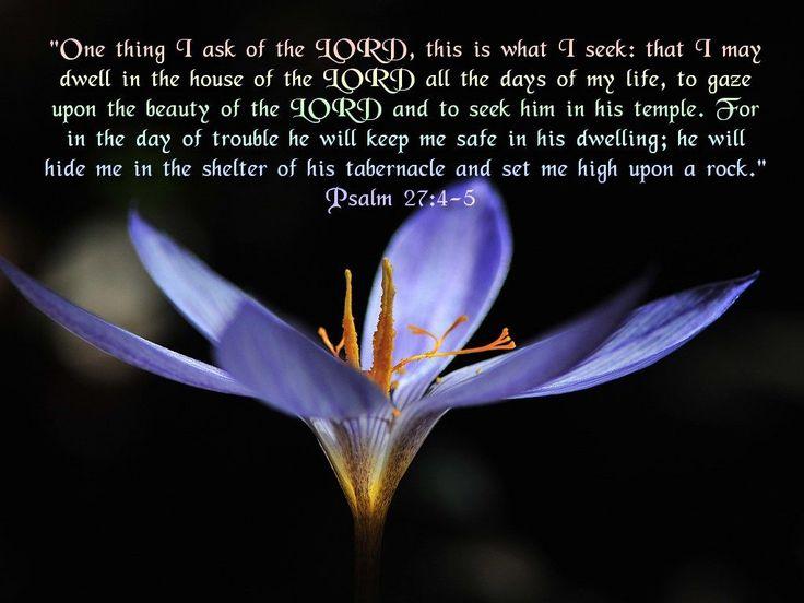 psalm 27 4 wallpaper - photo #6