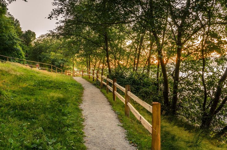 6 Best Parks for Day Hikes in Surrey