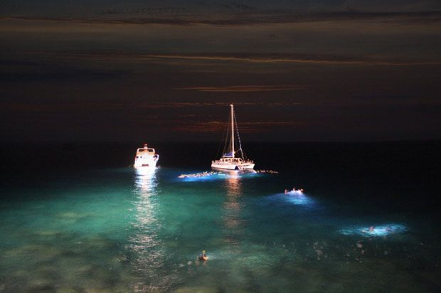 Night dive sugar beach 5 Scary Things to do in St. Lucia