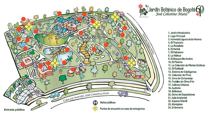 jardin botanico bogota - Google Search