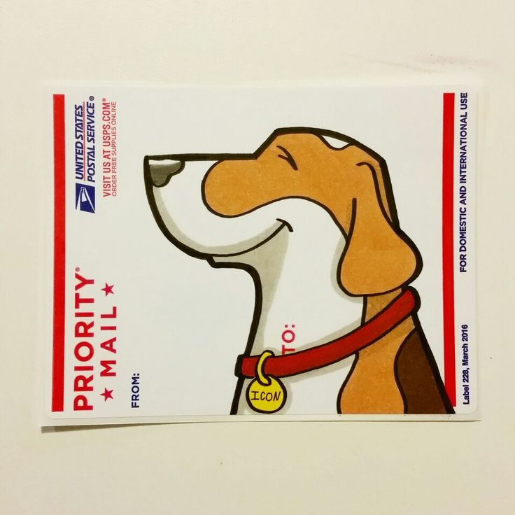 Boomerangthebeagle graffiti dog sticker stickers pinterest graffiti