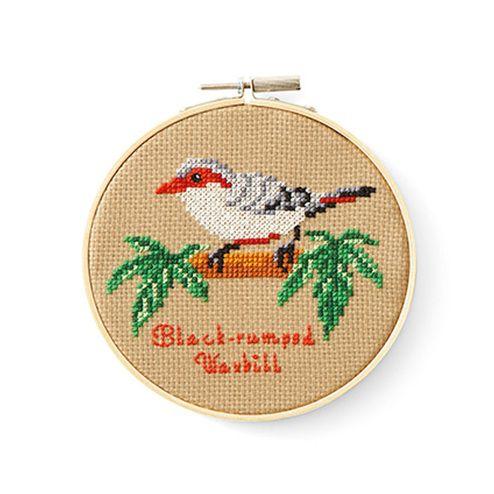 美しく愛らしい命をステッチ。|壁一面にまあるい鳥かご 鳥の楽園クロスステッチの会