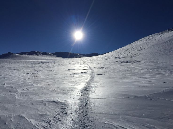 Climbed Vinson Dec 2014