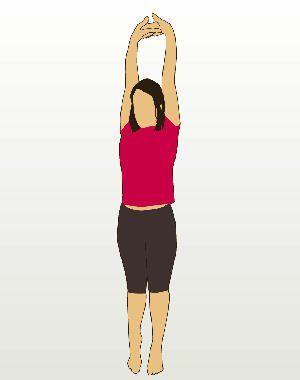 l'un des étirements les plus connus : sur la pointe des pieds, poussez vos mains
