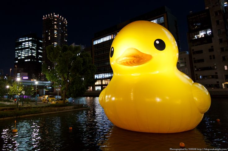 rubber_duck2015_06.jpg (1200×800)