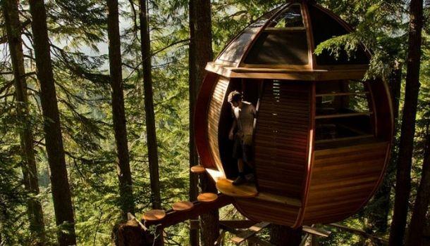 Házak a magasban: a 9 legszebb fára épült otthon
