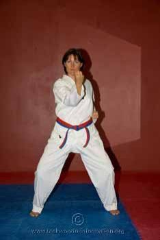 Deb middle block,taekwondo basics