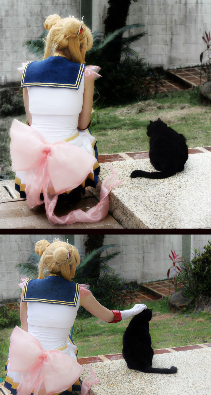 Sailor Moon. Cosplay. <- looks like luna wasn't happy with Usagi, petting is helping against the cat's will