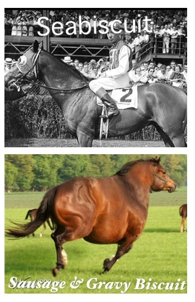 Fat horse humor is particularly satisfying right now.