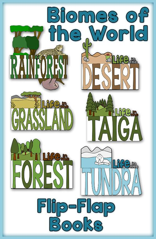 BIOMES of the WORLD will be TONS of fun with this bundle of flip flap books. The students will record information about the climate, animal life, plant life, and where each biome can be found in these FRESH and FUNKY Flip Flap Books! A MUST SEE!$