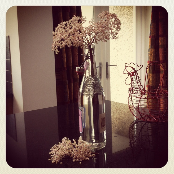 I would like to put my Elderflower Champagne into this bottle - so pretty.