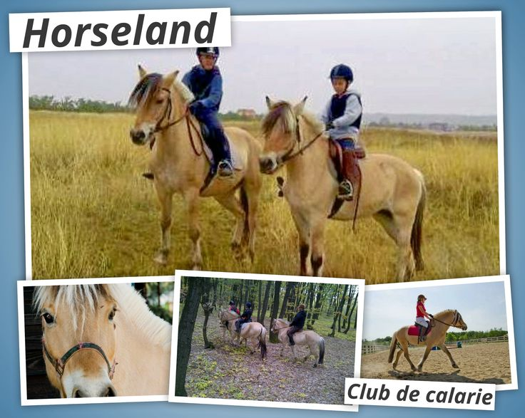 Suntem pe www.horseland.ro  https://www.facebook.com/pages/Horseland-Club-de-Calarie/112486245539561?fref=ts
