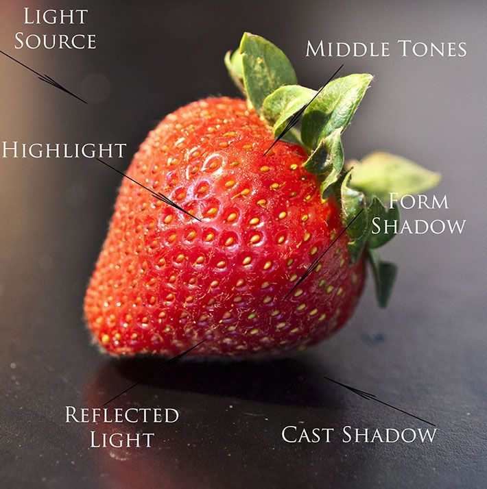 Make objects pop from the page (instead of falling flat) by adding shadows to your drawings. Learn how to identify form shadows and cast shadows and effectively shade them.