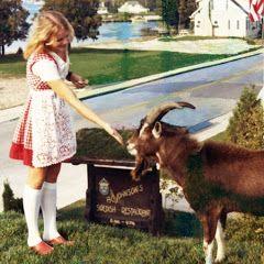 85 Best Door County Heritage Images On Pinterest Door