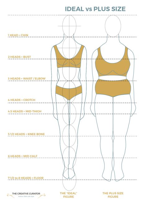 Plus Size vs Ideal Figure Body Proportions based on Western standards - The Creative Curator