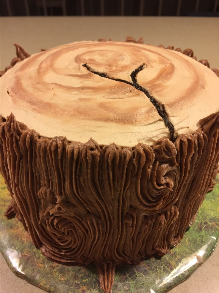 Tree stump smash cake for a first birthday party. Goes with a lumberjack forest theme.