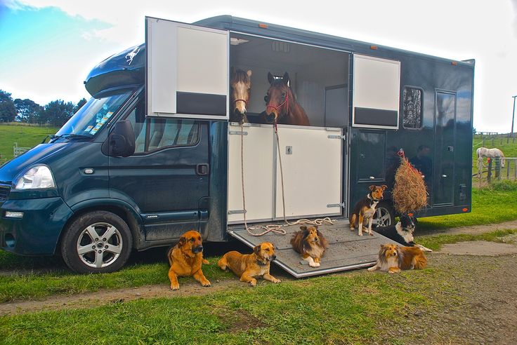 A Horsepower customer's van being put to good use http://www.equinetrader.co.nz/directory/horsepowernz/