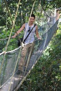 Mt Kinabalu National Park Canopy Walk