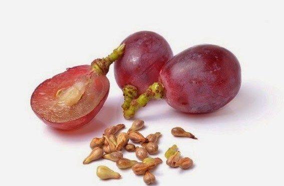 Manfaat Biji  Anggur Untuk Kesehatan Mata, Annggur ternyata memiliki kebaikan tersendiri bagi kesegatan, Terlebih untuk menjaga hingga menumpas berbagai penyakit pada mata