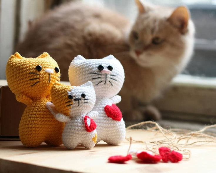Amigurumi Kitten Patterns : Best amigurumi images breien chrochet and crochet