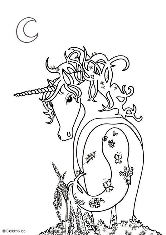 110 best images about unicorn coloring pages on pinterest