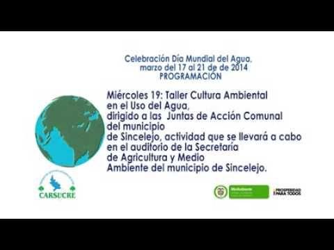 Dia mundial de agua 2014 Carsucre Sincelejo