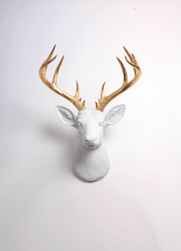 Best 25 Faux Deer Head Ideas On Pinterest White Deer