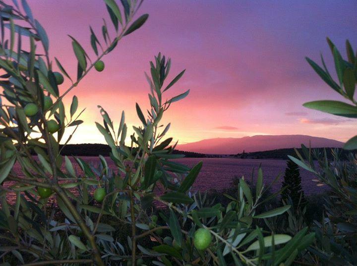 My place in amazing Pelion mt, Greece