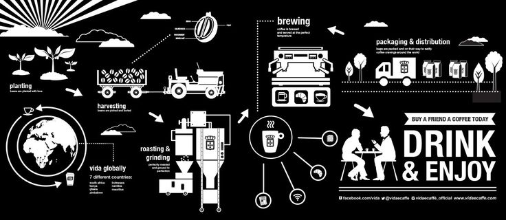 Infographic showing the process our coffee goes through before you get to taste its sweet aroma!