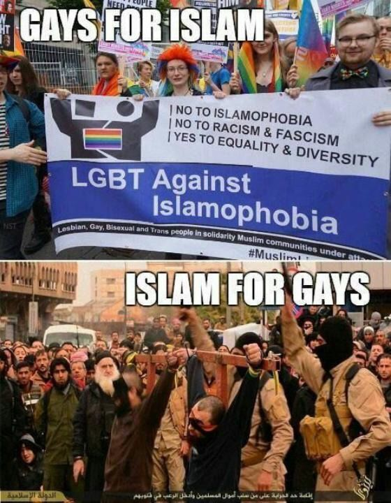 Do liberals know ANYTHING about Islam? Or are they spoon fed EVERYTHING???