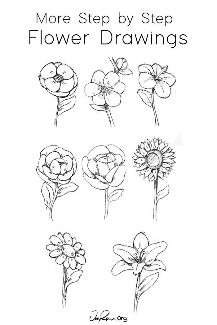 How To Draw A Calla Lily Step By Step Jeyram Art In 2020 Flower Drawing Flower Drawing Tutorials Floral Drawing