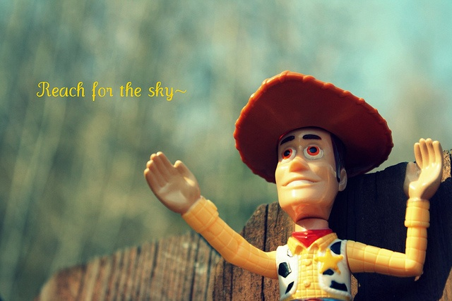 """Do nothing less than """"Reach for the Sky"""": Sky Quotes, Disney Quotes, Reach, Toy Story 3, Pins, Photo"""