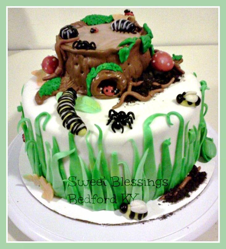 Bug cake, Outdoor cake,boys cake