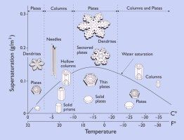 This website maintained by Kenneth Libbracht of Caltech provides much information about the science and physics of snowflakes. Extend student knowledge by exploring the visuals and text provided in this website. CCSS.ELA-Literacy.RST.6-8.7 CCSS.ELA-Literacy.RST.6-8.9 CCSS.Math.Content.8.G.A.4 CCSS.Math.Content.8.G.A.3