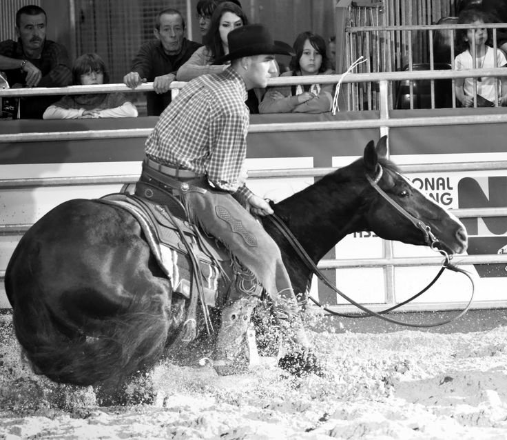 Cutting Horse Shows | look out ranch cutting horse