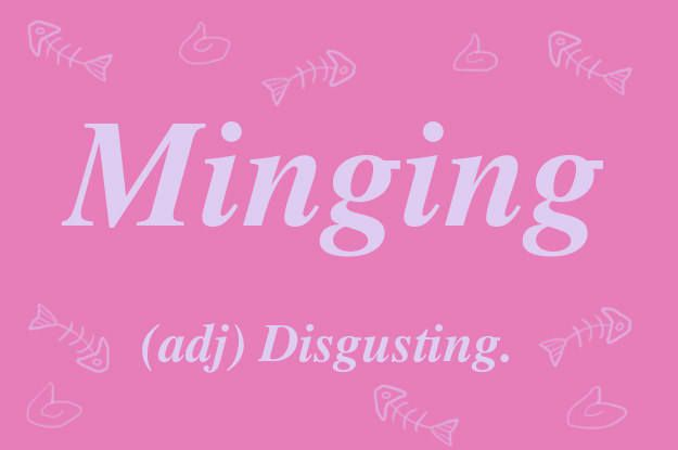 """This wonderful word originates from the Scottish word """"ming"""", meaning excrement. """"Minging"""" and the related noun """"minger"""" are often employed to describe someone you regret shagging or would never shag because they are so minging. It could also be applied to something found rotting at the back of the fridge."""