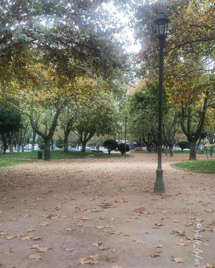 Alameda de Talca...otoño...Región del Maule Chile. by chile_fotos