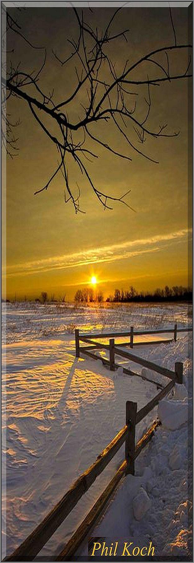 AMAZING WINTER SUNSET SCENERY  #photo by Phil~Koch