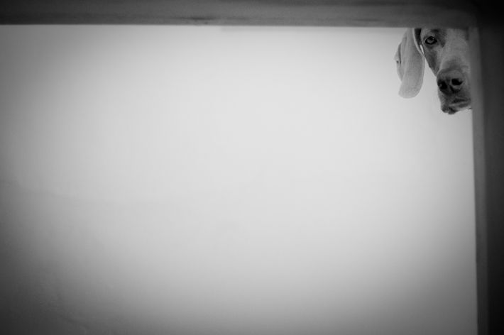 Fotografia - Composição: Espaço Negativo - Negative Space in Photography
