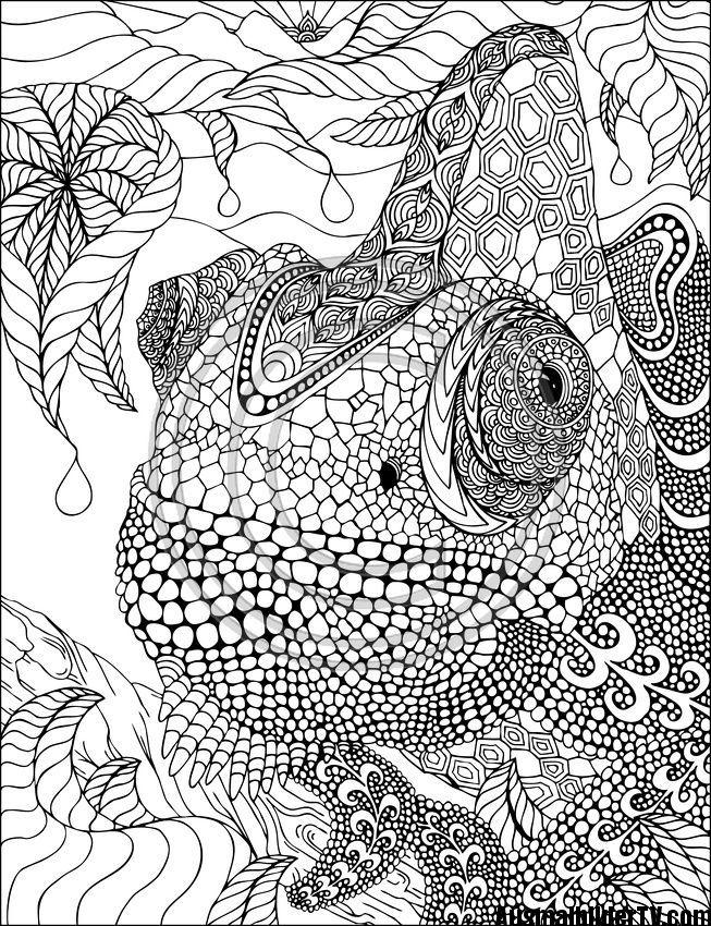 Die besten 25+ Mandala tiere schwer Ideen auf Pinterest ...