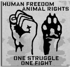Best 25 welfare quotes ideas on pinterest animal rights for Animal activist tattoos