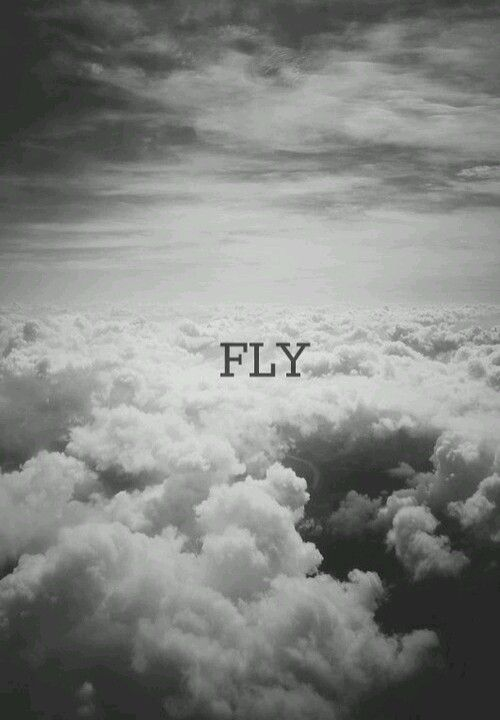 Learn to Fly above failures.