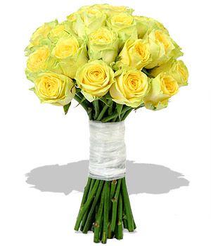 Roses Winnipeg Winnipeg | Academy Florists | (877) 588-4822
