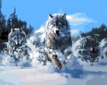 Frameloze foto olieverfschilderij by numbers verf by nummer voor home decor canvas schilderij 4050 wolf running(China (Mainland))